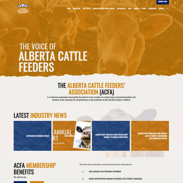 alberta-cattle-feeders-association